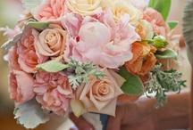 Bouquets / by Sarah Morris