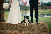 Wedding pics / by Cassie Morinville