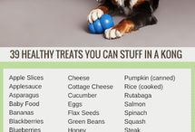 Dogs healthy treats