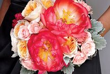 BEAUTIFUL BOUQUETS / WEDDING BOUQUET, WEDDING FLOWERS / by Style by Design