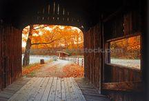 Autumn's Splendor 9 / by Christa Gettys
