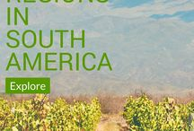 Best Wine Regions in South America / Over the past few years, South American wine have captured the attention of even the most serious wine lovers.  South America's climate and geography makes grape growing and winemaking suitable.