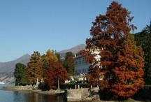 Autumn in Bellagio