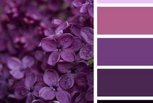 Palette / Color palette