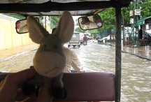 Travels to Cambodia 2012