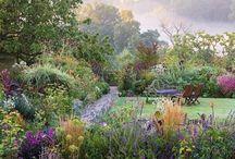 ogród mój