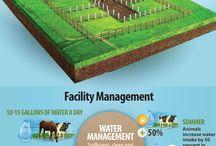 farm: Ideas