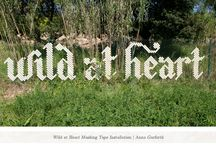Cool Garden Ideas #gardenideas / by Ilona's Garden