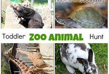 Animal activities for littles