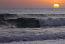 Surf / Surfing Pictures / by Sico Wave
