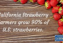 CA GROWN Fun Facts / Facts about CA GROWN vegetables, fruits, nuts, flowers and more! #CAGROWN #California #Agriculture