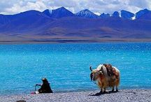 "The beauty of ""Tibet"""