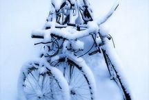 動く / 自転車、車、動くもの