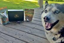 Prized Pet Treat Box