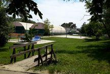 Skate Park and Baby Park