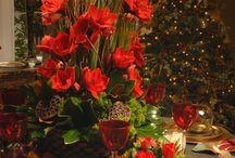 Christmas Decorations / christmas decorations ideas, christmas decorations