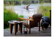 Xakanaxa Camp / On the banks of the Khwai River on the Xakanaxa Lagoon in the heart of the Moremi Game Reserve ensures that it is one of the only safari camps which can provide guests with an authentic, year round Okavango Delta land and water safari experience.