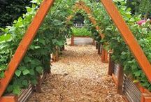 Ogród podpory do pnących