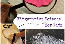 Kindergarten: Science / Kindergarten science activites