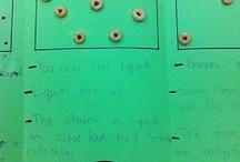 Grade 2/3 Science