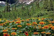 Nature - Colorado, Monde