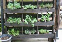 Grönsaker mm