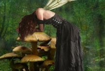 More fairies pixies n magical things