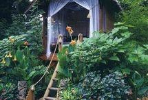 Gardening / by Deborah Gonzalez