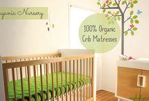 Organic Nursery