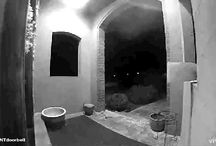#VIVINTdoorbell Moments / Customers sharing funny, candid, and precious moments from their front porch with the #VIVINTdoorbell camera.
