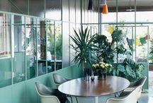 interior foliage