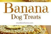 Dogs treats