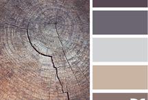 Palette de couleurs des murs
