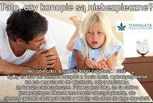 Marihuana medyczna / marihuanamedyczna.com