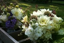 wedding flowers / Our brides and their blooms