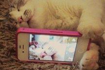 # Let me take a selfie