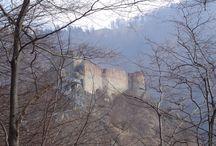 QSL februarie 2014 - Cetatea Poenari / http://www.rri.ro/ro_ro/qsl_februarie_2014_cetatea_poenari-13088