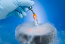 Cryopreservation / Cryopreservation