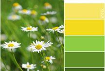 Natural Colour Combinations