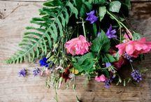 Blumensträuße ↟↟ Flowers