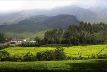 6 Days Honeymoon package for Rs 14,500. / http://travelgowell.in/kerala-honeymoon/6-days-kerala-honeymoon-packages/munnar-thekkedy-alappy-cochin.html. 6 Days Kerala Honeymoon package for Rs 14,500.covering Munnar,Thekkady,Alappy and Cochin