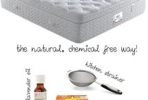 clean your mattress