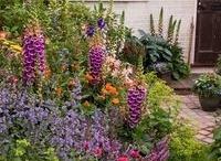 Gardens / by Leslie Jones