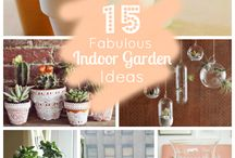 Indoor Garden Obsession / Plants and everything to do with Plants and Gardening Decor INSIDE your home.