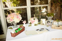 Ouisie's Weddings / From the walk down the isle to the last hug good night, memories are made at Ouisie's Table.