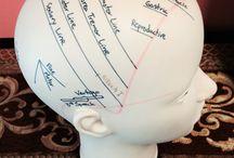 Cráneopuntura