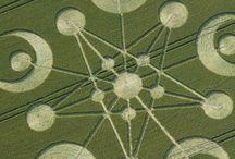 Cropcircles/Graancikels