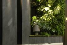 Vertikalni zahrady - Vertical Garden