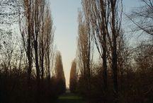 Parco Nord Milano (Il senso del tempo) / Foto del Parco peregrinandovi dentro nel corso del tempo - http://www.parconord.milano.it/