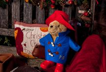 Paddingtons trip to Brecon Beacons Holiday Cottage
